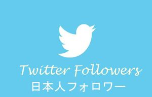 売れ筋No1●ツイッター日本人フォロワー6000人増加●Twitter