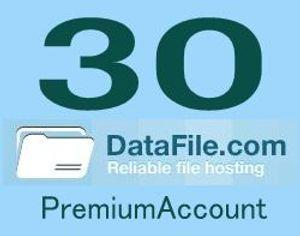 Datafile30日プレミアム