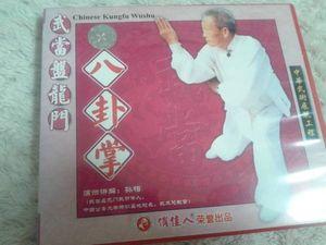 VCD 盤龍門 八卦掌 拳法 武術 古武道 空手 護身術 中国拳法