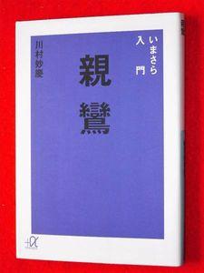 ◆川村妙慶『いまさら入門 親鸞』他力本願/悪人正機/凡夫【即決】送料160円