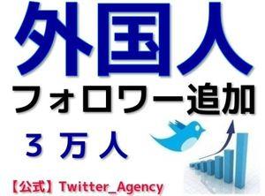 【公式】ツイッター外国人フォロワー3万人追加【振分】 twitter