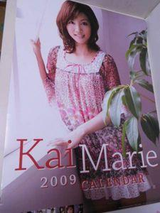 E090 【カレンダー サイズ:中】 ⑩甲斐まり恵 2009年 切り離し済み(全て揃い)