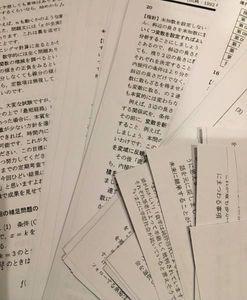 【超希少!!値下げ1円スタート】 灘高 大量 数学プリント 通年分 スタンダード ...