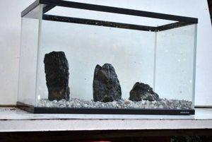 ★アクアリウム渓谷石/3点セット水槽に◎川魚レイアウト 熱帯魚 石 水草 (検索)ADA 龍王
